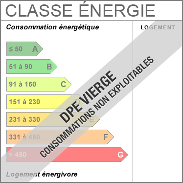 DPE vierge - Consommations non exploitables